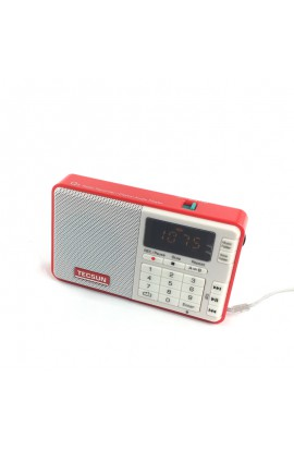 Q3 FM POCKET RADIO WITH MP3 ROOD